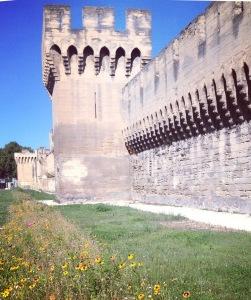 avignon walls1