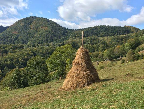 Haystack Rakhiv Carpathians