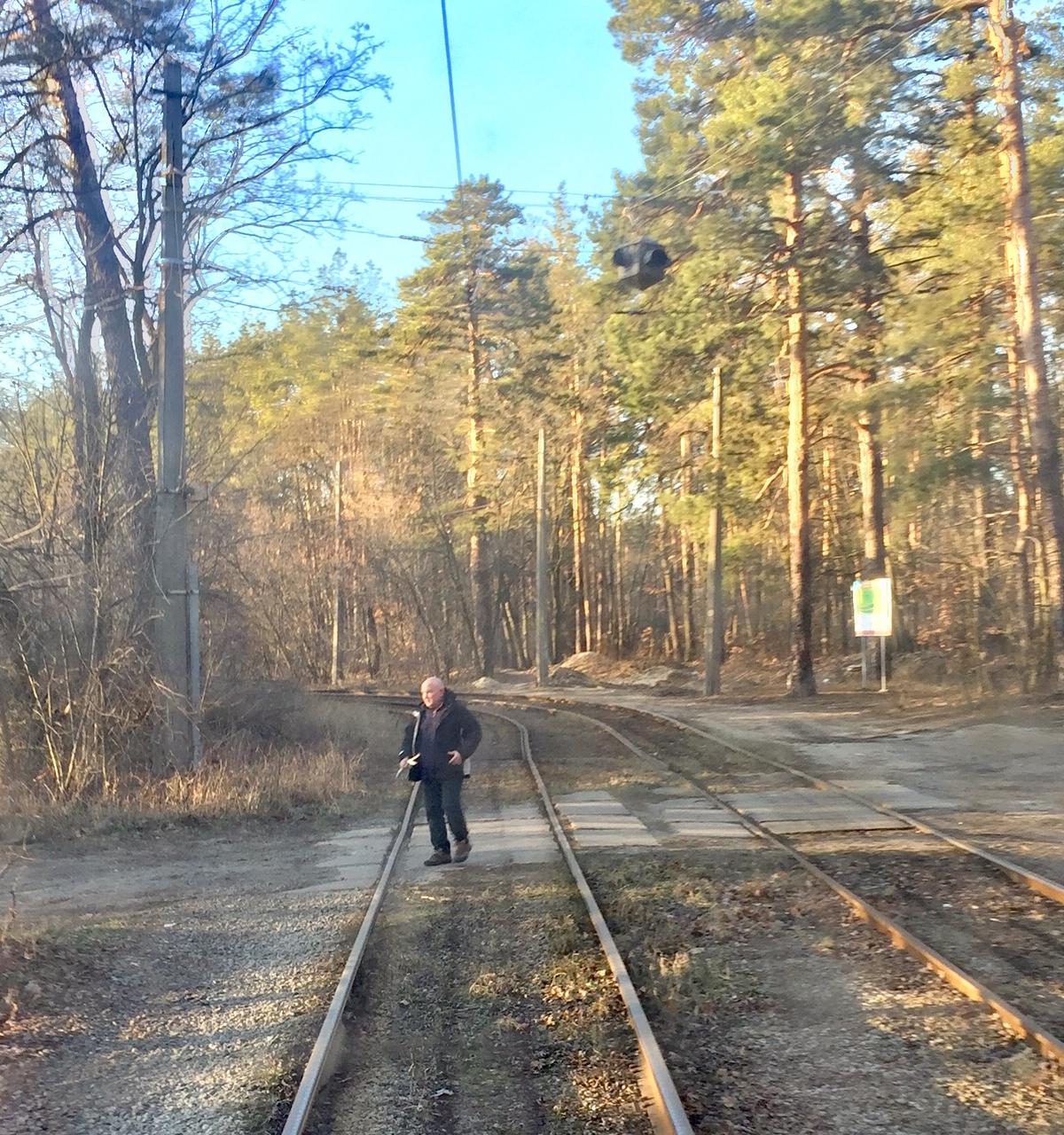 Kyiv tram through the forest